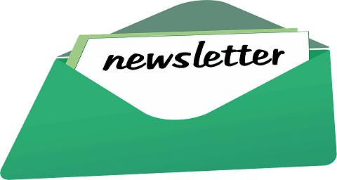 qué es newsletter
